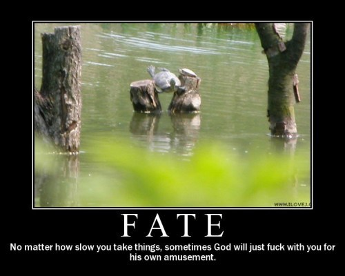 Fate - No matter how slow you take things sometimes God will just fuck with you for his own amusement