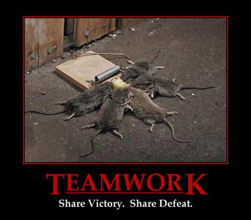 teamwork_-_share_victory_share_defeat.jp